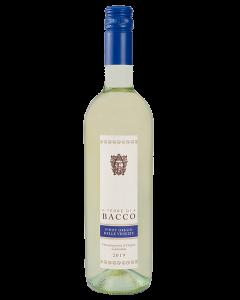 Terre Di Bacco Pinot Grigio Delle Venezie Do